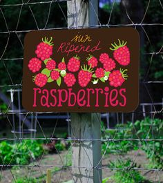 Sun Ripened Raspberries Farm Sign 18X12 by BainbridgeFarmGoods, $34.95