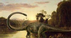 Probably a Mamenchiosaurus. Legit necks on these guys.