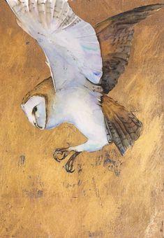 Divination and Oracles ☽ Navigating the Mystery ☽ Barn owl by Jackie Morris Art And Illustration, Illustrations, Tyto Alba, Gold Leaf Art, Bird Artwork, Owl Art, Street Art, Animal Paintings, Spirit Animal