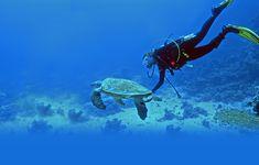 Fun Filled Snorkeling In Lakshadweep by Vishnu Das