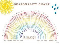 Seaonality chart - t