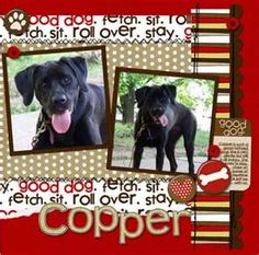 dog scrapbook pages                                                       …