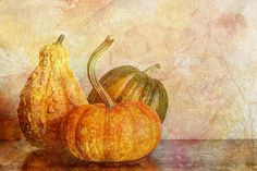 """"""" Gourd And Pumpkins II""""      by Heidi Smith"""