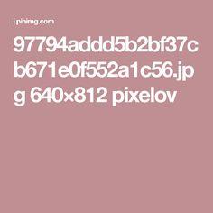 97794addd5b2bf37cb671e0f552a1c56.jpg 640×812 pixelov