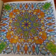 1000 Images About Lost Ocean Page 4 Square Turtle Mandala