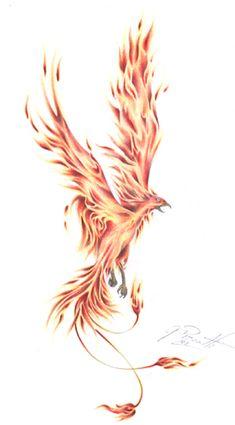 Phoenix Tatto by GisaPizzatto on DeviantArt Phoenix Feather Tattoos, Phoenix Tattoo Feminine, Small Phoenix Tattoos, Simple Phoenix Tattoo, Pheonix Feather, Watercolor Phoenix Tattoo, Phoenix Drawing, Phoenix Design, Phoenix Tattoo Design