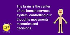 March is National Brain Awareness Month -  #funfact #exerciseyourbrain #brain #nervoussystem #control #memory #decisions #education #learn