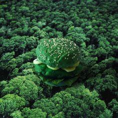 Go green burger. Cream cheese au wasabi et colorant vert. Concombre. Menthe fraîche. Poulet mariné au citron vert et colorant vert. Sésame. Mangez un burger, vous sauverez un arbre.