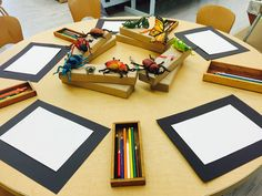 Insect Observational Drawing Provocation- Black cardstock to set the work space Preschool Rooms, Preschool Classroom, Preschool Art, Art Classroom, Reggio Emilia Classroom, Observational Drawing, Kindergarten Science, Childhood Education, Teaching Art