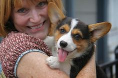 This little Corgi brings more than just the usual puppy love to her new home. Josie Mae is bringing back laughter and smiles for her parents, who lost their son Jesse, and their previous Corgi, Maggie, in just the last eight months.