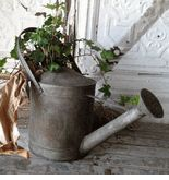 Flower Shop    Sprinkle Tin Watering Can $19  each / 2 for $18 each