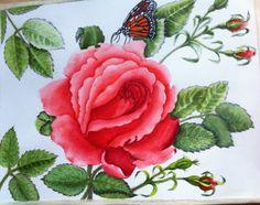 Watercolor, Colour, Rose, Flowers, Plants, Beauty, Pen And Wash, Color, Watercolor Painting