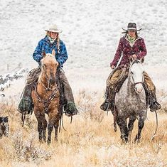 Life is better with good horses, good dogs, and good friends! Cowgirl And Horse, Horse Love, Horse Riding, Trail Riding, Cow Girl, Cow Boys, Cowgirl Pictures, Horse Pictures, Western Riding