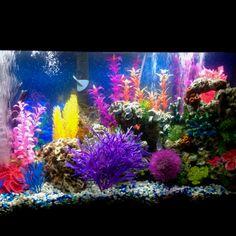 Fish tank ornaments ebay fish tank decoration ideas my decor ideas pools aquascapes - Petit aquarium design ...