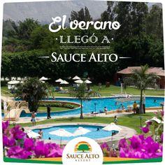 #SauceAlto es el mejor lugar para disfrutar del sol y de momentos inolvidables en familia.  Afíliate aquí >> http://www.saucealto.com.pe/contacto.html
