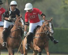 Gonzalo Pieres's Audi advances with a Perfect 2-0 record in 2014 USPA Piaget Gold Cup -