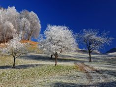 Original Landscape Photography by Andreas Ender Digital Photography, Landscape Photography, Nature Photography, Buy Art, Paper Art, Saatchi Art, Original Art, Country Roads, Fine Art