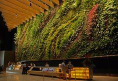 CapitaLand, 6 Battery Road, Rainforest Rhapsody, Singapore   Vertical Garden Patrick Blanc