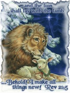 REVELATION The Lion shall lay down with The Lamb. I shall make ALL things new! What a glorious day that will be, when we'll be with Jesus / Yeshuah for eternity! Lion And Lamb, Art Carte, Prophetic Art, Christmas Animals, Christmas Scenes, Christmas Pictures, Christmas Cards, Merry Christmas, Clip Art