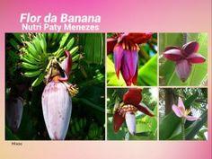 Benefícios Da Flor Da Banana