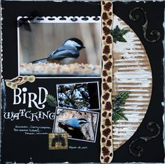 Birdwatching - Scrapbook.com