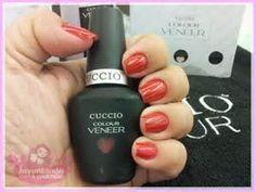 cuccio europe - Yahoo Image Search Results