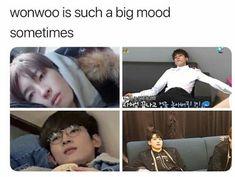 Seventeen Album, Seventeen Memes, Seventeen Wonwoo, Kdrama Memes, Funny Kpop Memes, Mingyu, K Pop, I Have No Friends, Seventeen Wallpapers