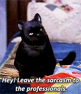 salem sabrina the teenage witch salem saberhagen sttwg childhood homies