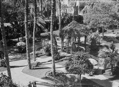 Shepheard's Hotel garden