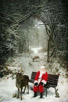 """""""Believe in love. Believe in magic. believe in Santa Claus. Believe in others. Believe in yourself. Believe in your dreams..."""""""