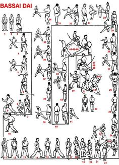 Shotokan Karate Black Belt Kata Bassai Dai with 53 moves. A combination of the base kata. Master Self-Defense to Protect Yourself Martial Arts Styles, Martial Arts Techniques, Art Techniques, Aikido, Judo, Tai Chi, Shotokan Karate Kata, Karate Moves, Kyokushin Karate