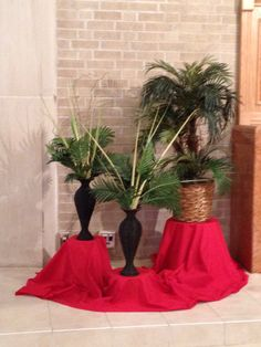 Palm Sunday 2014 - St. Philomena Church