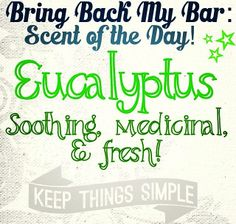"""The #BBMB #Scent of The Day is #Eucalyptus <3  Because you only have until tomorrow to place an order for this """"retired"""" #fragrance! https://Denie.scentsy.us/Scentsy/Buy/Category/1261 #Scentsy #BringBackMyBar #ScentsyAddict #WicklessCandles #ScentsyFavorite"""