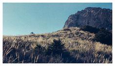 #naturaleza #nature #España #Calblanque #vsco #vscocam #vscoespana