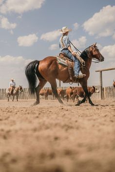 Foto Cowgirl, Cowgirl Style, Western Photography, Horse Photography, Little Cowgirl Photography, Western Riding, Horse Riding, Rodeo Girls, Westerns