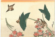 3 Sparrows & Plum Blossoms by Hokusai