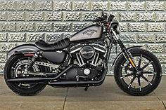 2016 Harley-Davidson Iron 883 - went and saw this yesterday. My future baby once I get back at ittttt. Excited!