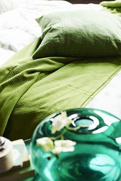 O nosso descanso também é verde.  [Capa VIGDIS]