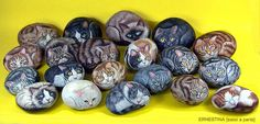 Cats painted on rocks by sassidipinti, via Flickr