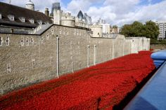 Poppies at the Tower Tower Of London, Looking Up, Poppies, Challenges, Sea, Building, Travel, Viajes, Buildings