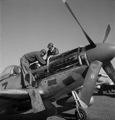 Poster Print Wall Art Print entitled Tuskegee Airmen mechanics Marcellus Smith and Roscoe Brown, on a fighter plane, 1945 Roscoe Brown, Tuskegee Airmen, Aircraft Maintenance, Ww2 Photos, P51 Mustang, Black Wings, Thing 1, Military Aircraft, Military Soldier