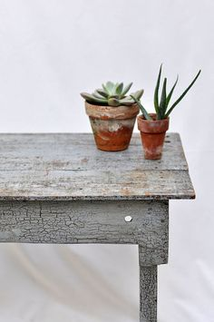 Check out the best indoor plants for farmhouse, French Country and Cottage Style Homes.See how to decorate with indoor plants for a chic and elegant look. Decor, French Country Decorating, House Plants Indoor, Green Plants, Bohemian Modern Style, Cacti And Succulents, Plant Decor, Plant Life, House Plants Decor