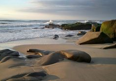 Windansea Beach, La Jolla. The best beach in San Diego.