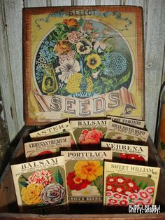 "My love for ""ViNtaGe Garden""  started out many years ago when I lived in the Desert of all places!!!  It began with WATERING CANS and ""branc..."