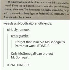 Calling all book nerds: Check out this funny Harry Potter humor for fans of Professor McGonagall. Harry Potter Love, Harry Potter Universal, Harry Potter Fandom, Harry Potter Memes, Potter Facts, Harry Potter Professors, Ginny Weasley, Hermione Granger, Books