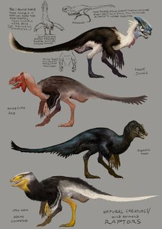 I modeled and textured this creature based on a design by M. Dinosaur Drawing, Dinosaur Art, Dinosaur Fossils, Dinosaur Crafts, Creature Concept Art, Creature Design, Fantasy Creatures, Mythical Creatures, Feathered Dinosaurs