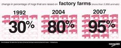 images kfc factory - Google Search