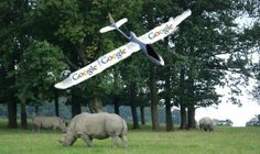 Google is helping track animal poachers in Africa! #Google #poaching #drones #fact