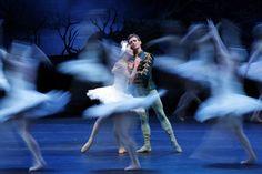 Ballet en ChileLuis Ortigoza y Natalia Berrios en el ensayo general de El Lago de los Cisnes en el Teatro Municipal de Santiago, Chile.