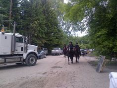 """"""" patrol the streets of Bowness on horseback. Emergency Responder, Calgary, Twitter, Abs, Crunches, Abdominal Muscles, Killer Abs, Six Pack Abs"""